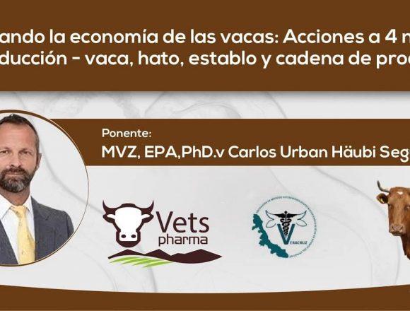 Mejorando la economía de las vacas: Acciones a 4 niveles de producción –  vaca, hato, establo y cadena de producción