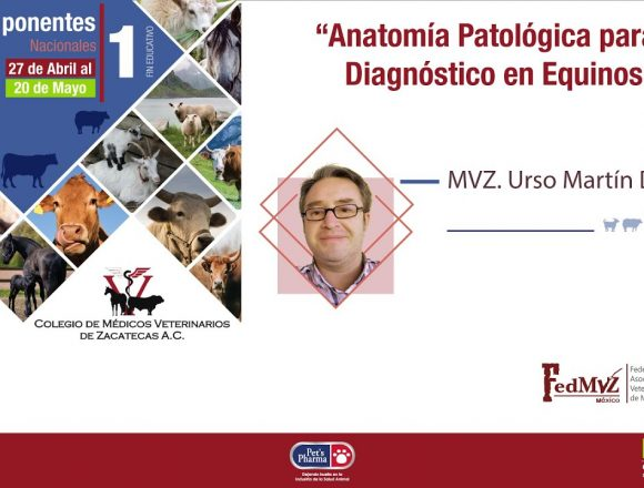 Anatomía Patológica para el Diagnóstico en Equinos